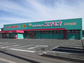 ディスカウントドラッグコスモス伊予大洲店
