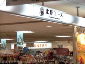 北野エース市川店