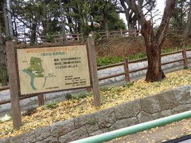 須和田公園