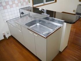 http://image.rentersnet.jp/4615f0dba2d0c699a0f461d1c1224bd7_property_picture_957_large.jpg_cap_キッチン:カウンターには炊飯ジャー等が置けます!レイアウトはあなた次第!