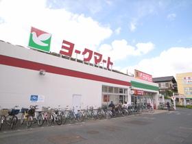 ヨークマート藤原店