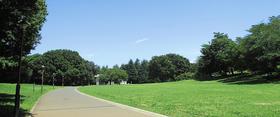 光が丘公園多目的運動広場