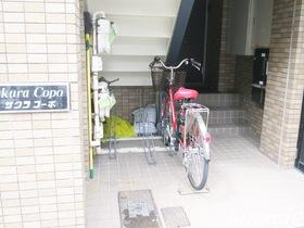 駐輪場です☆(数に限りあり)
