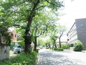 桜並木に面しています♪