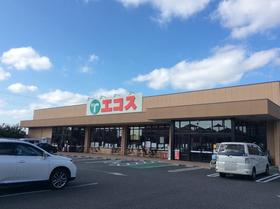エコス市川島尻店