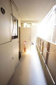 共用設備の廊下部分です♪