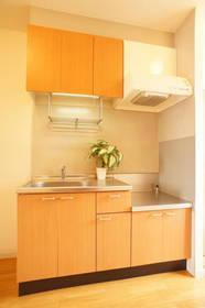 吊り棚もあって収納力の有るキッチン