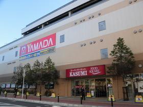 ヤマダ電機市川本八幡店