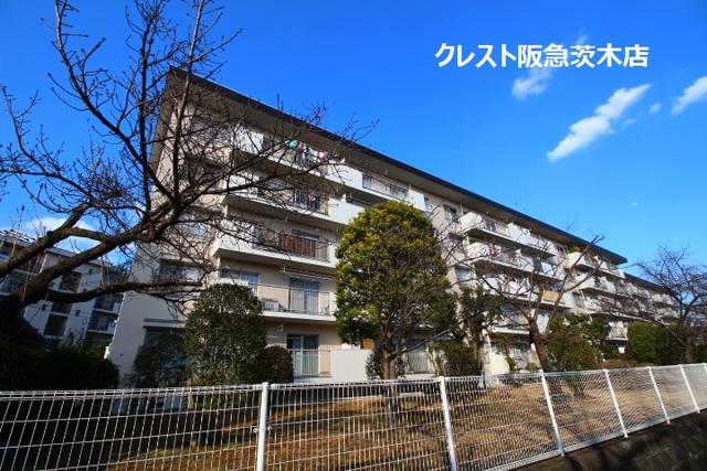 大阪府茨木市新郡山の賃貸マンションの外観