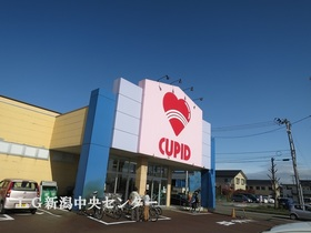 http://image.rentersnet.jp/a3b0f85c-ce13-4d46-ad4c-78f929faf2fd_property_picture_958_large.jpg_cap_キューピット長潟店