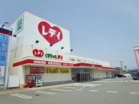 レデイ薬局新居浜前田店