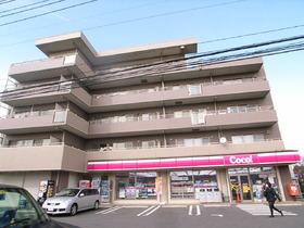 COCO藤崎