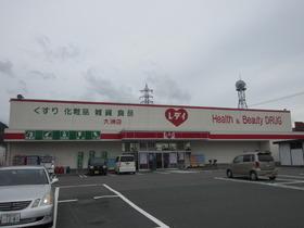 レデイ薬局大洲店