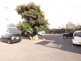 駐車スペースも