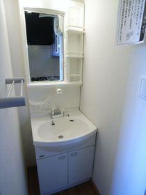 洗面台はシャンプードレッサータイプ!