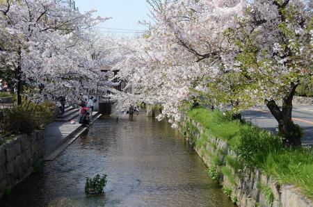 長瀬川緑地