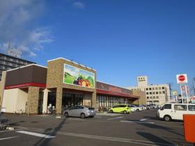 マルヨシセンター茜町店
