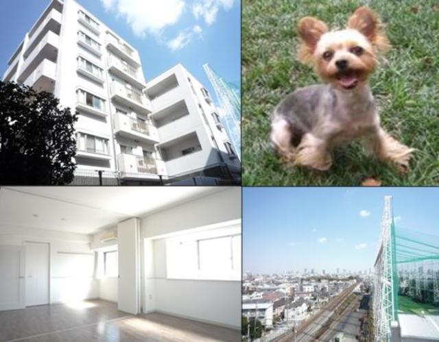 Apartment・H500外観