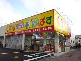 どらっぐぱぱす赤塚新町店