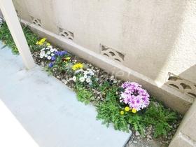 お花のワンポイントは嬉しいですね♪