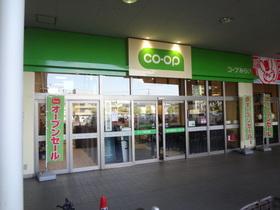 コープ市川店
