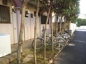建物前に植木が綺麗に植えられています