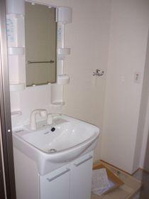 独立洗面台と室内洗濯機置き場