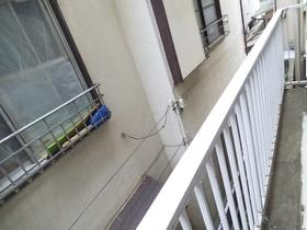 窓からです♪