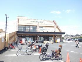 ワイズマートディスカ夏見店