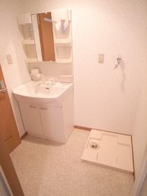洗面台はシャンプードレッサーだし。