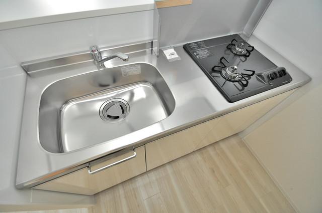 グランドゥーエ永和駅前 単身のお部屋には珍しい豪華なシステムキッチン完備です。