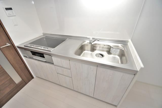 ラモーナ巽北Ⅱ 落ち着いた色合いのキッチン。使い勝手も良いです。