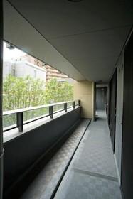 シティタワー大井町 206号室