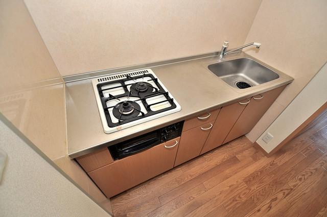 メゾンドゥエスポワール システムキッチンなので広々使えて、お料理もはかどります。