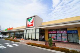 ヨークベニマル日和田店