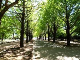都立光が丘公園(赤塚口)