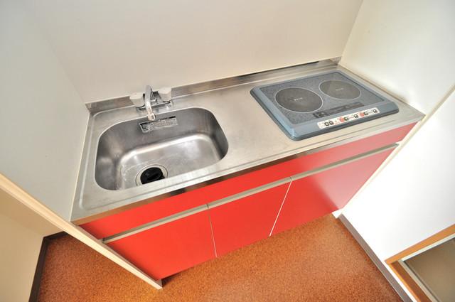ラ・フォンテ今里 電気コンロ付きのキッチンはお手入れが楽チンですよ。