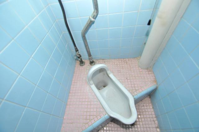 八戸ノ里KS 趣のあるお手洗いです。古き良き時代を思い出させてくれますね。