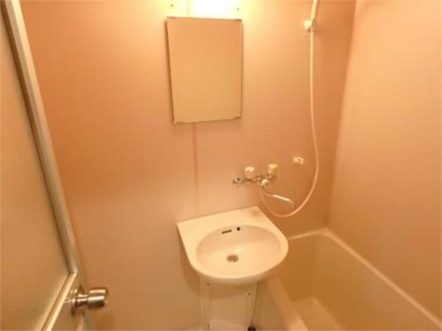 メゾンホワイトローズ洗面所