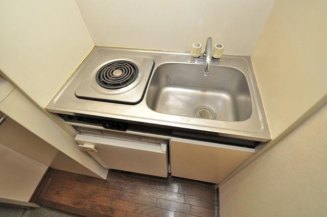 ヴィラアルタイル 機能的なキッチンにはミニ冷蔵庫が完備されています。
