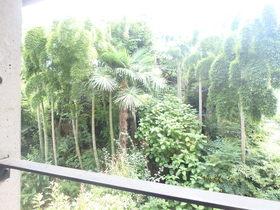泰山館植栽