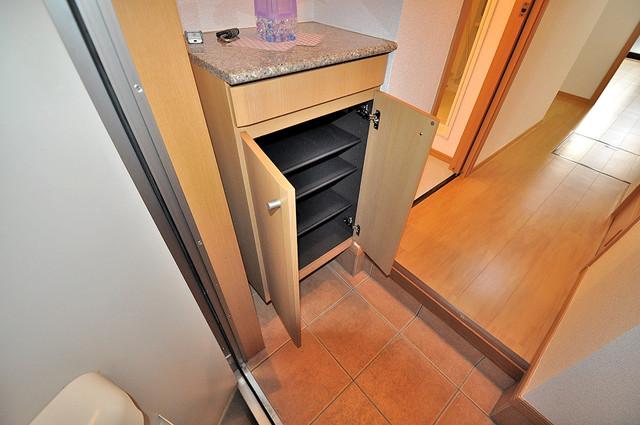 コンフォート・R 明るい玄関には大きめのシューズボックスがありますよ。