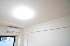 ライオンズプラザ上野毛 411号室