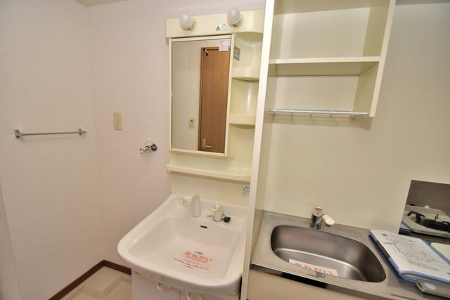 カーサ・デル・ソーレ 人気の独立洗面所にはうれしいシャンプードレッサー完備です。