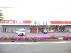 ドラッグストアセキ東越谷店