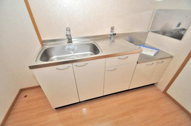 セレンディピティO・V シンプルなキッチンです。あなた好みのコンロを置いてくださいね。