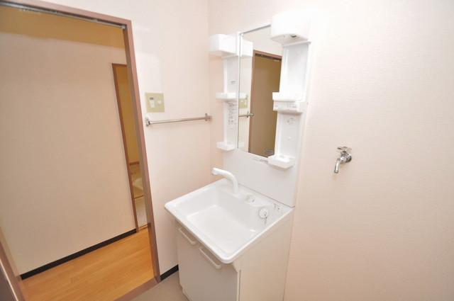 メゾンタツミ 人気の独立洗面所はゆったりと余裕のある広さです。