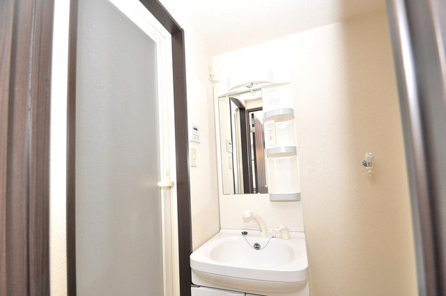 ハートハイム 豪華な洗面台はもちろんシャンプードレッサー完備です。