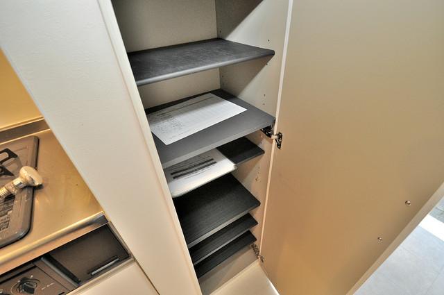 ドゥエマーニ楠根 玄関にはオシャレなシューズボックスが設置されていますよ。