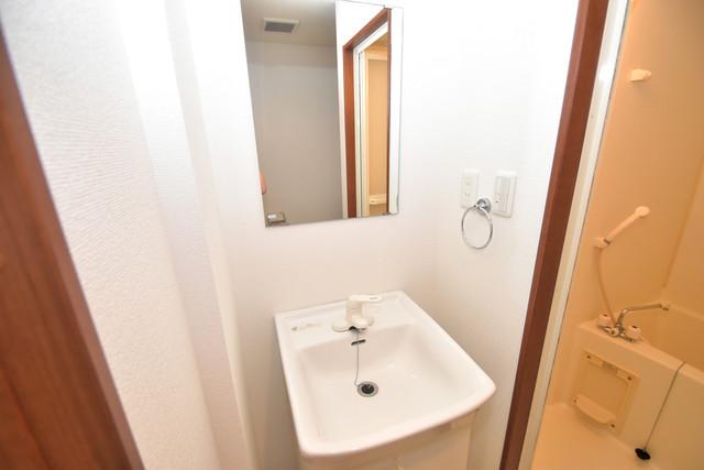 セレブコート近大前 人気の独立洗面所にはうれしいシャンプードレッサー完備です。